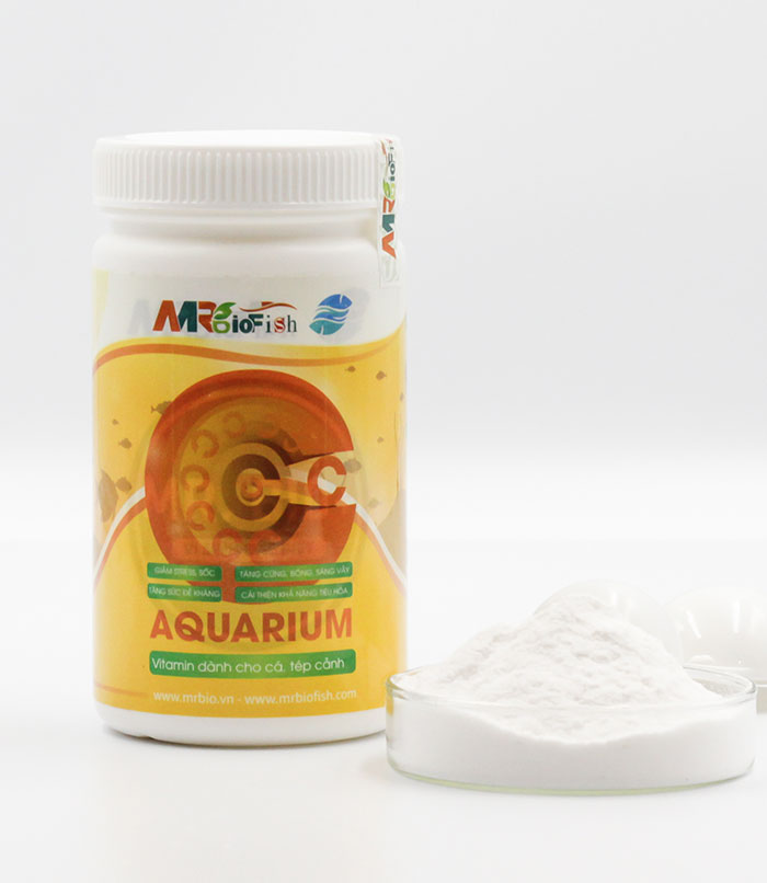 c-aquarium